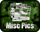Misc Images